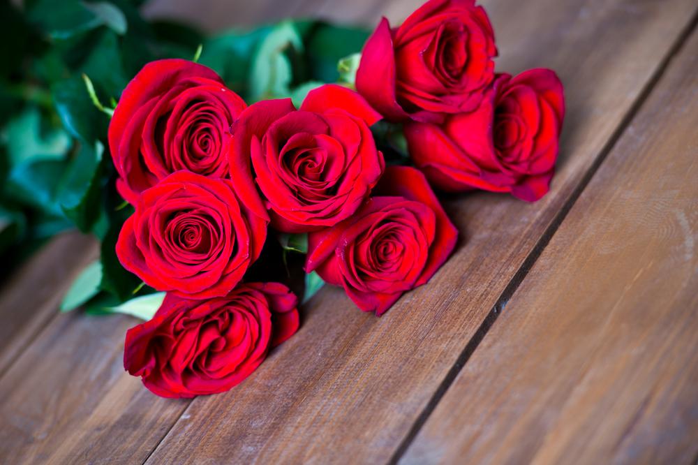 80+ Gambar Bunga Mawar Kata Cinta Terlihat Keren